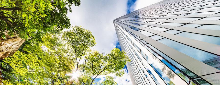Green Building: l'insieme di tecnologia, innovazione e design innovativo per il bene dell'ambiente